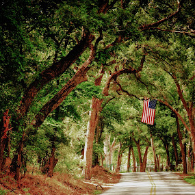 The River Flag by Scott Walker - Nature Up Close Trees & Bushes ( river road, flag, spirit, usa )