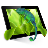 Chameleon 3D Live Wallpaper Icon