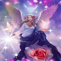 Rose Heavenly Angel LWP