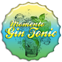 Moment Gin Tonic V.G icon