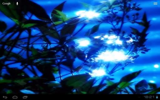 【免費個人化App】Lake Waters Sunlight Foliage-APP點子