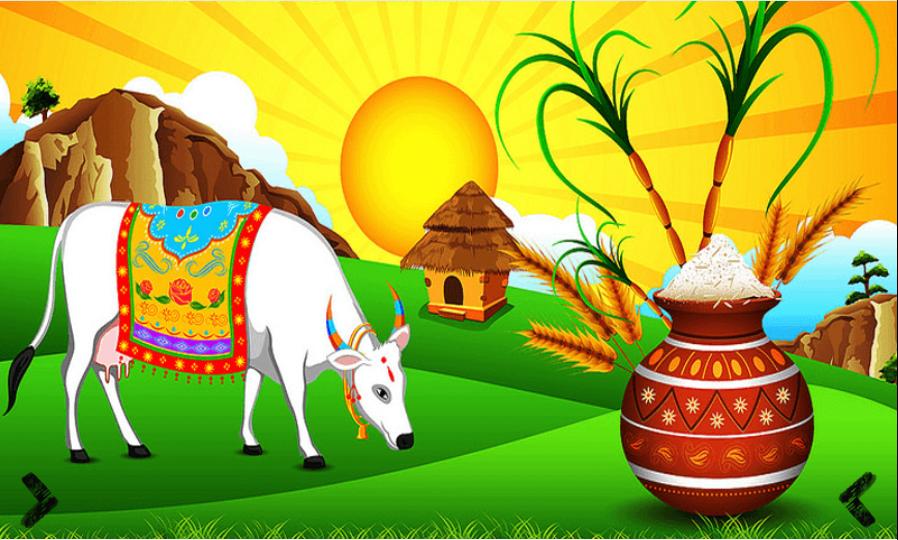 Sankranti Pongal Lohri Android Apps On Google Play
