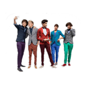 Widgets One Direction S