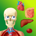 Puzzle Anatomy (learning game) icon