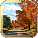 Best Autumn wallpaper Gallery icon