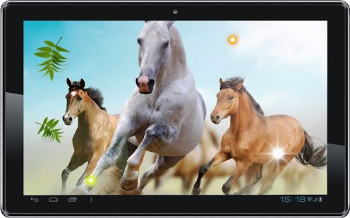 Horses Top HD live wallpaper