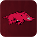 Razorbacks: Premium icon