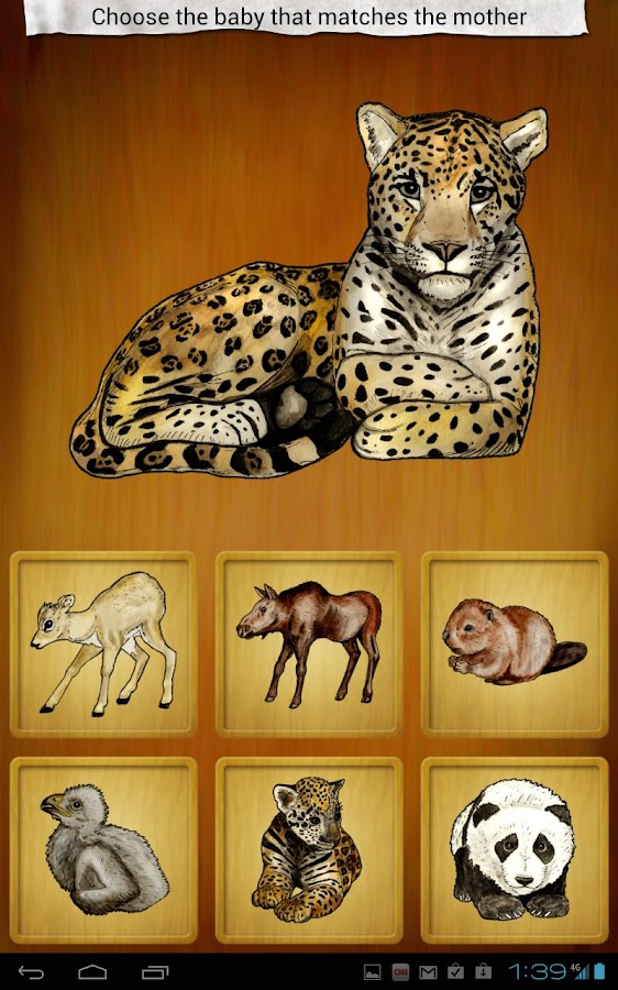 Hand Painted - Animals- screenshot
