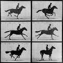 Horse AR icon