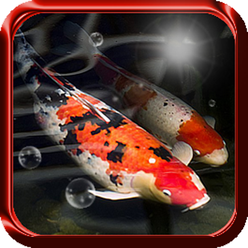 All apps for koi fish found on general play total files for Koi fish games