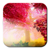Autumn HD Live Wallpaper