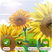 3D Sunflowers [SQTheme] ADW