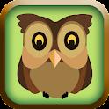 Little Owl - Fantastic Journey