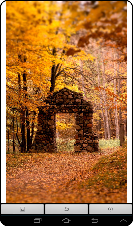 live autumn wallpaper android apps on google play