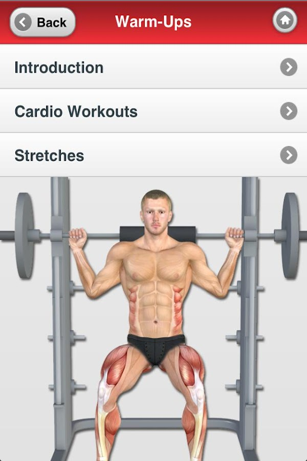 Muscle Building - Arms & Legs- screenshot