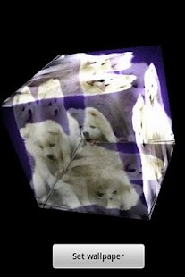3D cute dog A8 - screenshot thumbnail