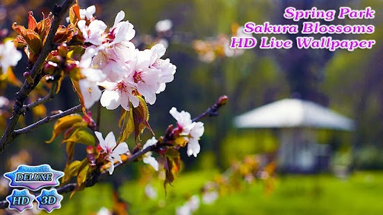 Spring Park Sakura Blossoms- screenshot thumbnail