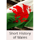 Short History of Wales-Book
