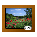 Various Photo Widget Pro logo