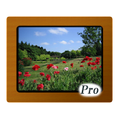 Various Photo Widget Pro