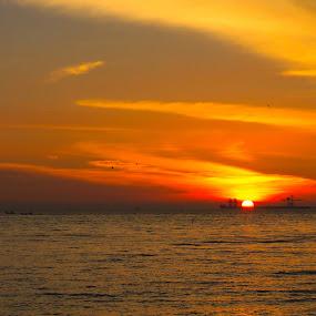 Sunset by William Cheng - Landscapes Sunsets & Sunrises
