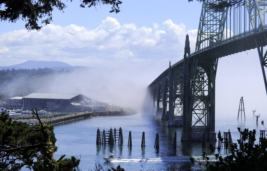 Newport, Oregon Bridge by Janet Young- Abeyta - Buildings & Architecture Bridges & Suspended Structures ( , Urban, City, Lifestyle, vertical lines, pwc )