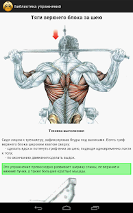 Exercises in the gym - screenshot thumbnail