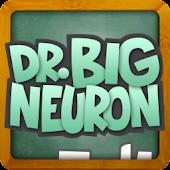 Dr Big Neuron