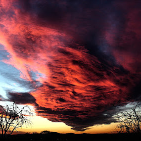 Clouds on fire by Ashley Phipps - Landscapes Cloud Formations ( clouds, red, bushes, fire )