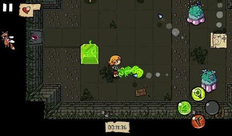 Ittle Dew Screenshot 22