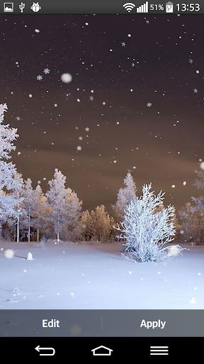 冬天 森林 動態壁紙