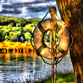 Throw Me A Line by Ward Vogt - Landscapes Waterscapes ( water, throw me a line, green, yellow, cedar lake, photography, new jersey, life saver, trees, denville, brown, nj, ward vogt )