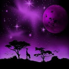 Imaginary africa-violet.LWP! icon