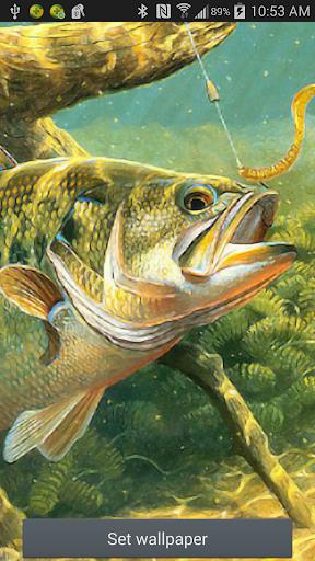 Bass Fishing Ripple Wallpaper