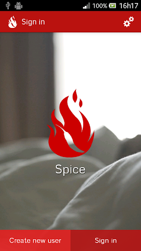Spice - Sexual Fantasies