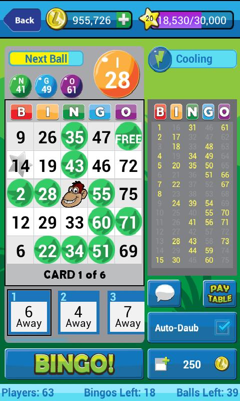 Lucky Bingo - screenshot