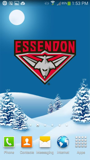 Essendon Snow Globe