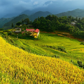 A rural school in the valley, Mu cang chai, Vietnam. by Jakkree Thampitakkul - Landscapes Travel ( mountain, rainy, tropical, children, travel, remote, education, landscape, ondo, asian, village, poverty, asia, developing, idanre, wet, rain, misty, clouds, equatorial, students, green, elevation, poor, vietnam, forest, kids, humid, rainforest, rural, country, school, fog, western, west, elementary, mist, elevated )