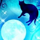 月と黒猫★キラキラ 夜空 FREE版 icon