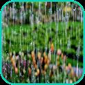 Rain Wallpaper icon