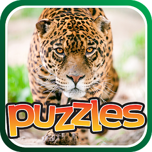 Jungle Cat Free Puzzles for PC and MAC