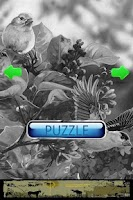 Screenshot of Puzzle Bird