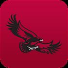 Saint Joseph's Hawks: Premium icon