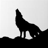 Lone Wolf - Registro di guerra