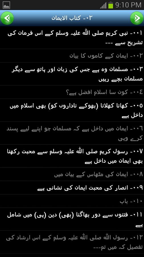 Sahih Bukhari Urdu - screenshot