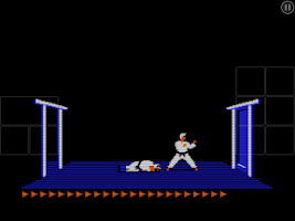 Screenshot of Karateka Classic