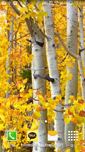 특이한노란숲배경전문가버전