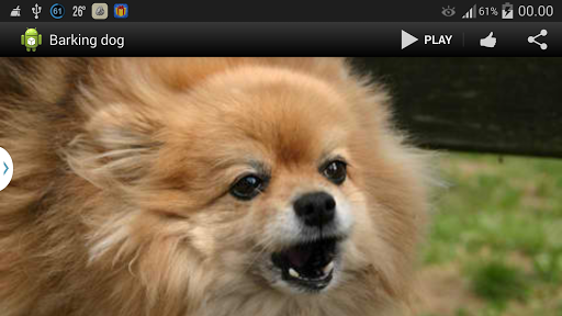 Barking Dog Sound Application Android