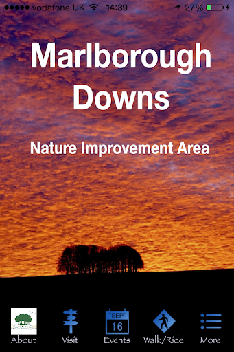 Marlborough Downs NIA
