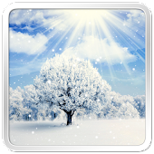 Winter Nature Live Wallpaper